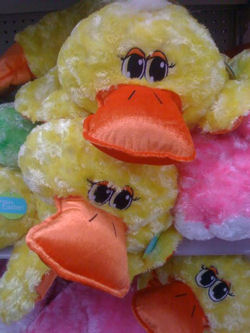 2009 Walmart Easter Duck with Big Flirty Eyes