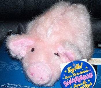 Walmart Shutterbug Pink Pig that Shakes & Giggles