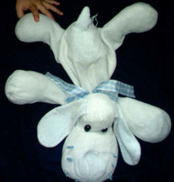White Dog with Blue Ears, Nose, Paws and Tail