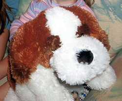 Large Walmart White Dog with Brown and Reddish Brown Patches