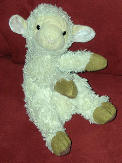 White Woolly Lamb with Tan Hooves