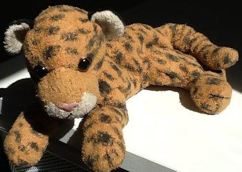 Beanie Baby Leopard