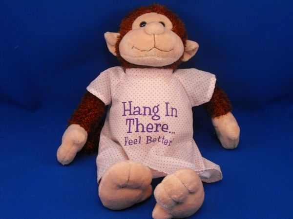 Petting Zoo 1994 Monkey HANG IN THERE FEEL BETTER
